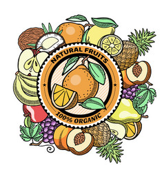 Fresh fruits engraved banner logo vector