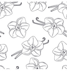 hand drawn outline seamless pattern with vanilla vector image