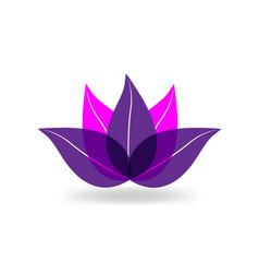 lotus plant icon vector image