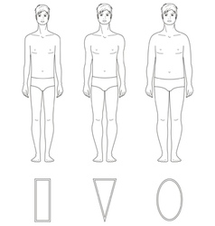 Male figure vector image vector image