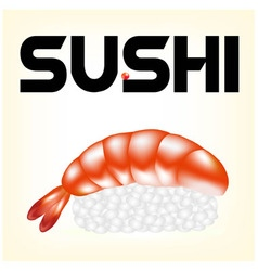 sushi with a shrimp vector image