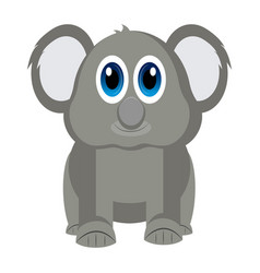 isolated cute koala vector image