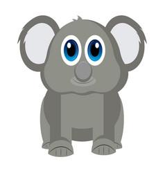 isolated cute koala vector image vector image