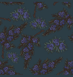 juniper seamless pattern on a dark background vector image