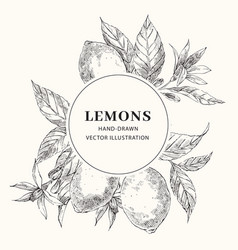 Lemon hand drawn sketch with circle frame template vector