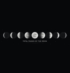 Realistic phases moon vector