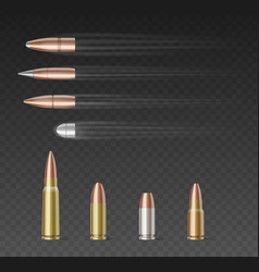 Set bullets different caliber over vector