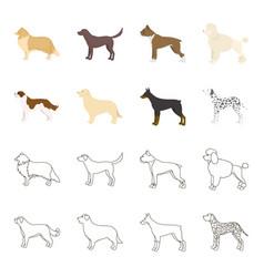 st bernard retrieverdoberman labrador dog vector image