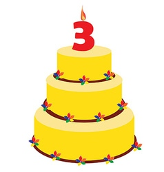 Third birthday cake vector image