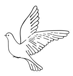 Soaring dove vector image vector image