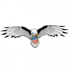 eagle stars and stripes vector image vector image
