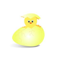 chicken4 vector image