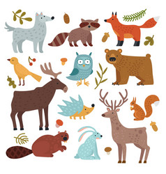 forest animals wolf raccoon and fox bear and vector image