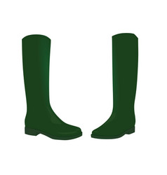 green boots vector image