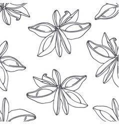 Hand drawn outline seamless pattern with anise vector