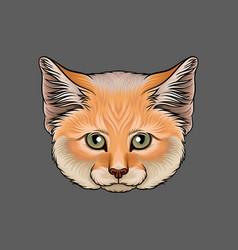 Head of lynx portrait of wild cat animal hand vector