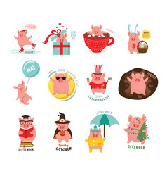 monthly cartoon cute pigs for 2019 calendar vector image
