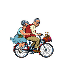 Old man and woman couple in love riding a bike vector