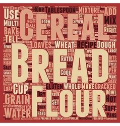 How To Bake Multi grain Bread text background vector image