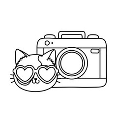 cat and photographic camera black and white vector image