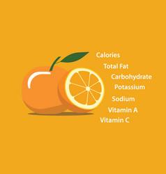 Orange fresh yellow nutrition element vector