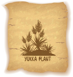 Plant Yucca Silhouettes on Old Paper vector image