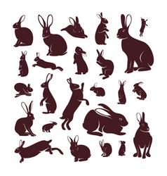 set rabbit design silhouette rabbit vector image