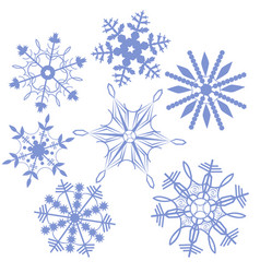 set snowflakes isolated on a white background vector image
