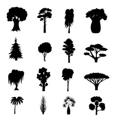 Silhouette black different tree types icons set vector