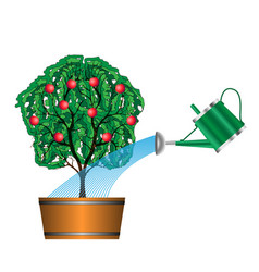 watering with a watering can of fruit tree vector image