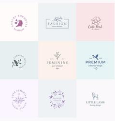 abstract feminine signs symbols or logo vector image vector image
