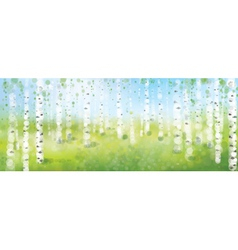 birch forest vector image
