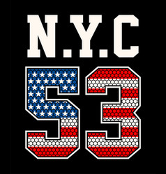 America flag 53 vector