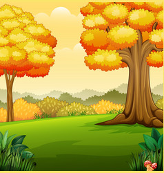 Autumn landscape with trees in the park vector