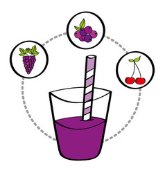fresh smoothie juice drink fruit grape cherry vector image
