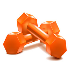 realistic detailed 3d dumbells set vector image