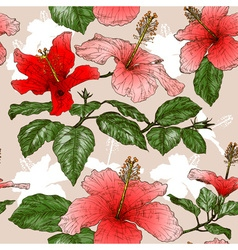 Seamless Floral Pattern with Hibiscus Flowers vector image