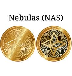 Nas Crypto Coins Vector Images (13)