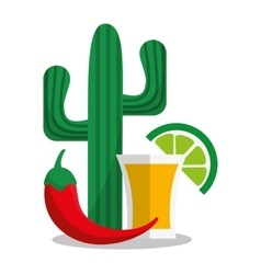 Tequila of Mexican culture design vector image