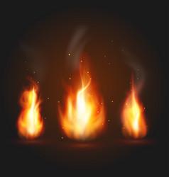 set of three fire vector image