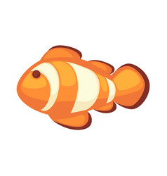 clownfish or anemonefish vector image