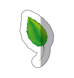 sticker color leaf icon vector image vector image