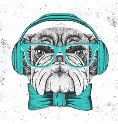 hipster animal bulldog hand drawing muzzle of vector image
