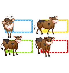 Square labels with brown cows vector image
