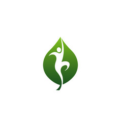 wellness leaf logo vector image