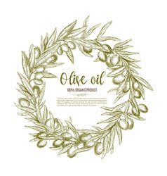 olive wreath sketch label for oil and food design vector image vector image