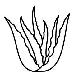 Aloe vera plant icon outline style vector