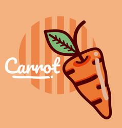 Carrot vegetable cartoon vector