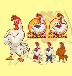 chicken chef vector image