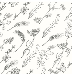 Seamless pattern with wild plants on a white vector